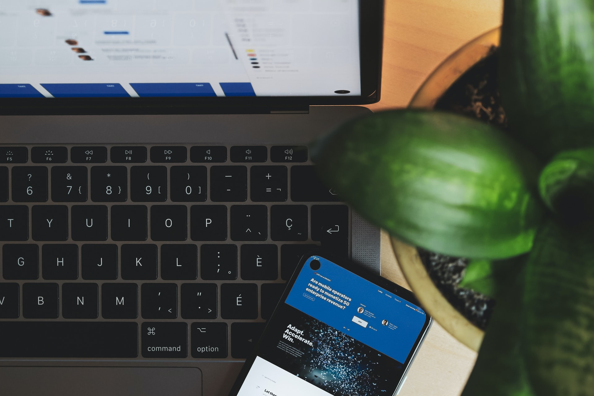 agence web - green IT